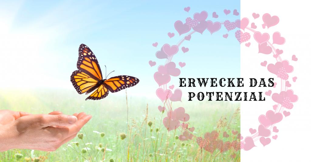 Erwecke das Potenzial-Newsletter 07-2019